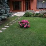 Udvar / Yard / Hof