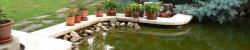 Bajna szállás - Virág vendégház halas tó