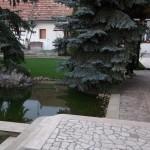 Halas tó / Pond / Dankbar See